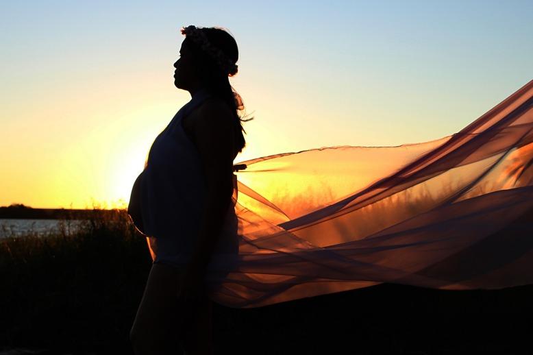 pregnant-woman-1866000_1920